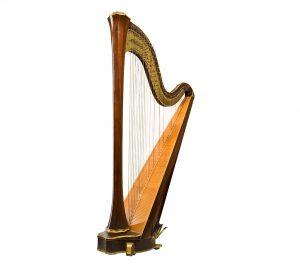harp les bij Muziekschool Barneveld