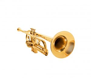 Trompet les bij Muziekschool Barneveld